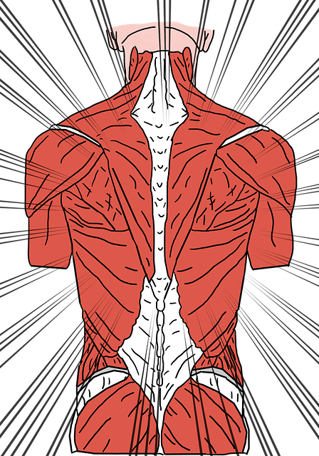 back pain muscle knot