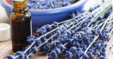 lavender oil is one of many home remedies for burns